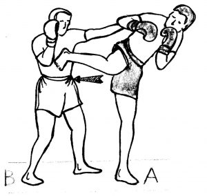 Spinning-Back-Kick-Technique-Of-The-Week-1024x968