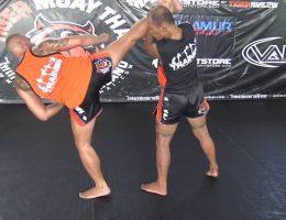 thai spinning heel kick