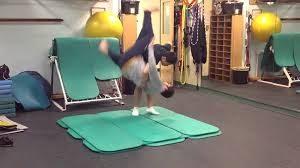 o goshi hip throw