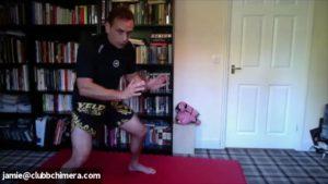 takedown zoom athena karate